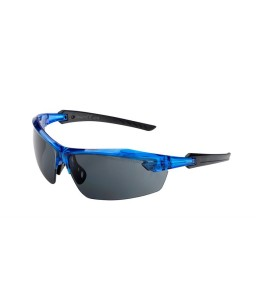 Saulesbrilles P1